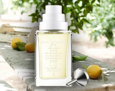 Limon de Cordoza